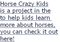 Horse Crazy Kids